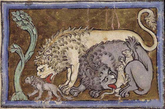 Picture of two lions with their cubs on an illustrated manuscript.